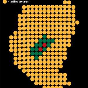 Sudan data visualization of land grabbing compared to amout of land by Rob Rooker aka gigglingbob
